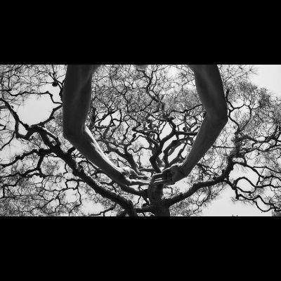 Arno Rafael Minkkinen, Same But Different, Half Circle of Life, Kyoto, Japan, 2016
